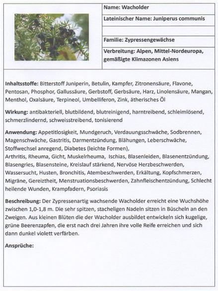 Heil und kr utergarten projekt s talk magazin for Schulteich anlegen